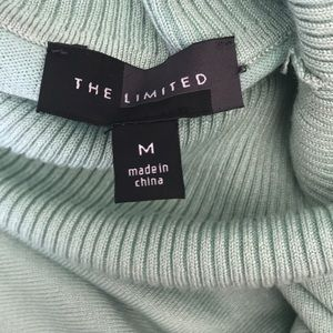 The Limited Tops - Mint Turtle Neck